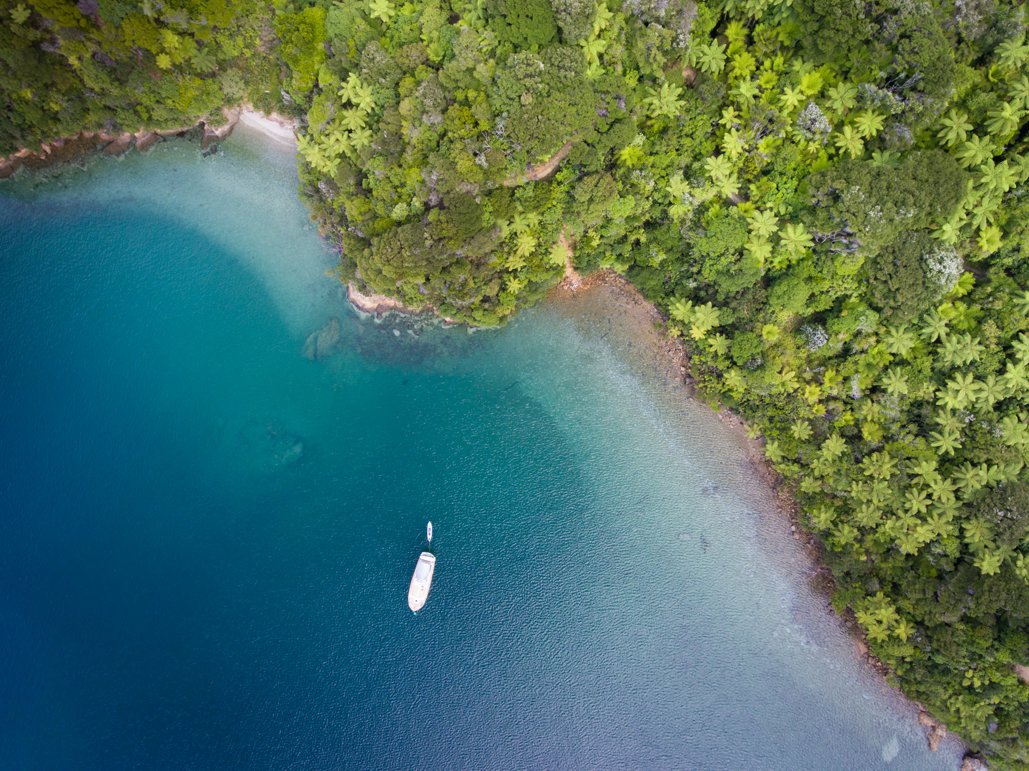 Aerial of lone boat in Marlborough Sound Bay