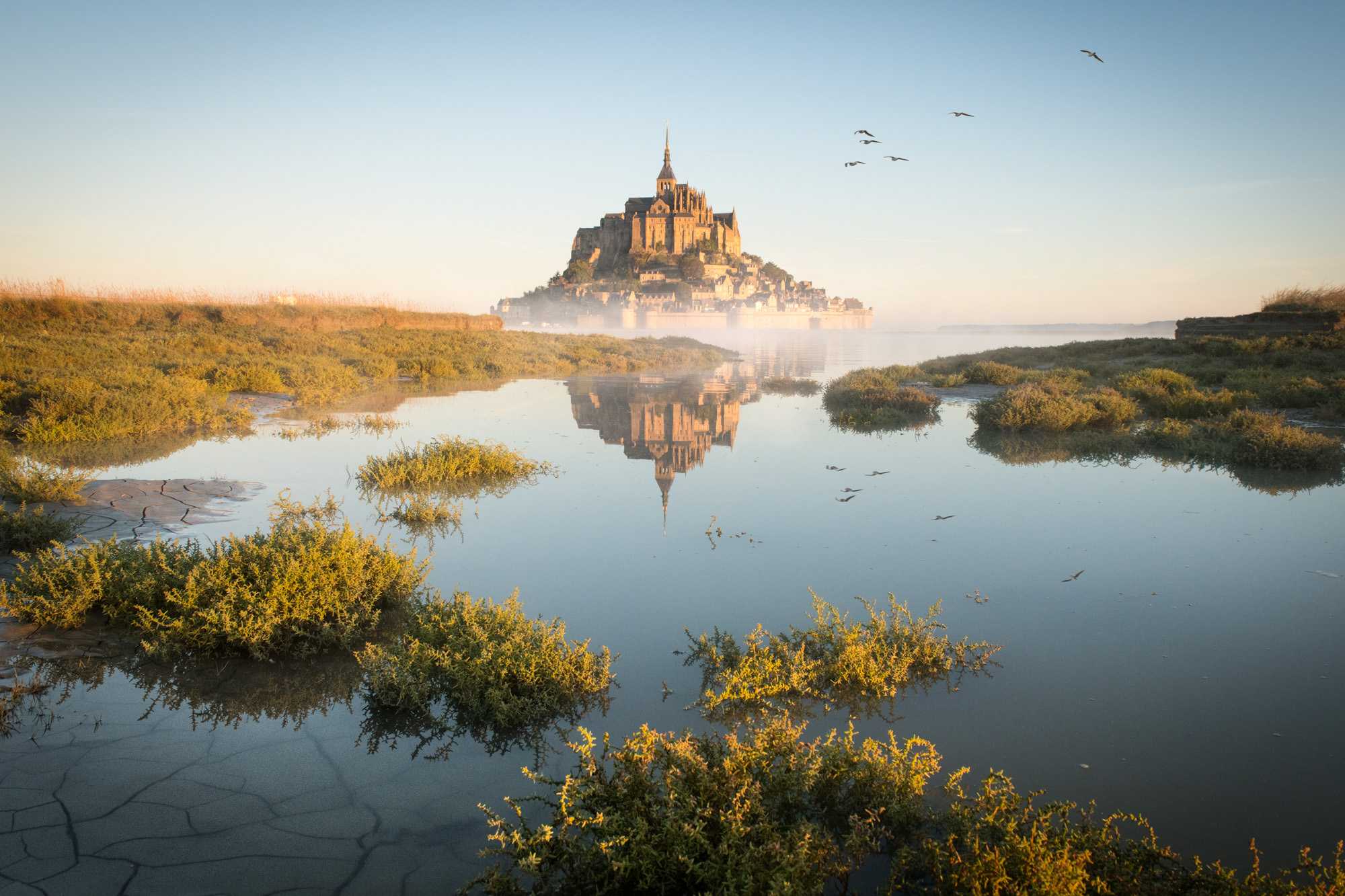 A fairytale castle above the marches in France with birds flying overhead