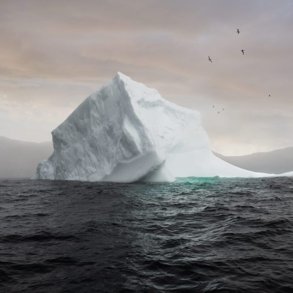 The Iceberg Festival in photos - Newfoundland & Labrador